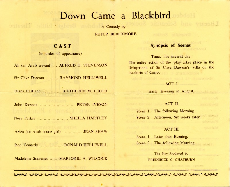 Down Came a Blackbird